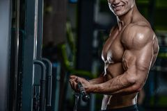 Handsome model young man training arms in gym Stock Images