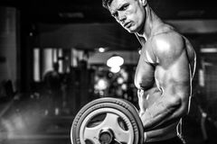 Handsome model young man training arms in gym Royalty Free Stock Photography
