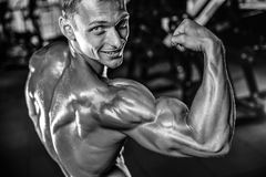 Handsome model young man training arms in gym. Handsome muscular Caucasian man of model appearance working out training arms in gym gaining weight pumping up Royalty Free Stock Photography