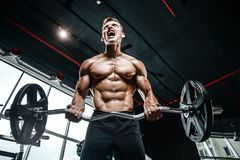 Handsome model young man training arms in gym. Handsome muscular Caucasian man of model appearance working out training arms in gym gaining weight pumping up Royalty Free Stock Image