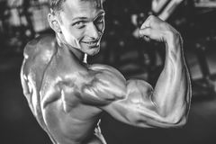 Handsome model young man training arms in gym. Handsome muscular Caucasian man of model appearance working out training arms in gym gaining weight pumping up Stock Image