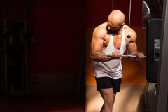 Muscular Man Exercising Triceps On Machine Royalty Free Stock Photos