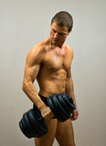 Handsome muscular male model. Stock Images