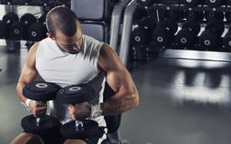 Handsome Muscular Male Model Posing With Dumbbells Royalty Free Stock Photos