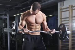 Handsome Muscular Male Model in a Standing Position Doing Biceps Stock Photography