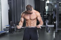 Handsome Muscular Male Model in a Standing Position Doing Biceps Stock Images