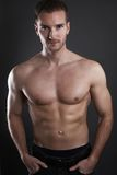 Handsome muscular male. Posing over a gray background Stock Photo