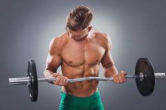 Handsome Muscular Man doing Biceps Curls with Barbell. Royalty Free Stock Photography