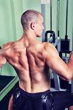 Handsome muscular man exercising in a gym Royalty Free Stock Photography
