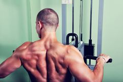 Handsome muscular man exercising in a gym Stock Images