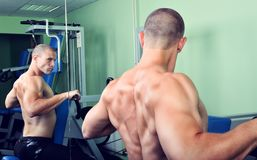 Handsome muscular man exercising in a gym Royalty Free Stock Image