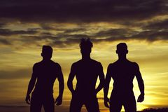 Handsome muscular men in sunset. Three men or bodybuilders silhouettes, handsome, young, male athlete people with sexy, muscular torso outdoors in sunset sky stock photography