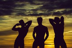 Handsome muscular men in sunset. Three men or bodybuilders silhouettes, handsome, young, male athlete people with sexy, muscular torso outdoors in sunset sky royalty free stock image