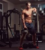 Handsome muscular shirtless bodybuilder male doing exercises with a dumbbell in the gym. royalty free stock images
