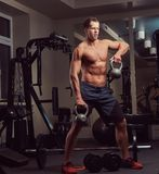 Handsome muscular shirtless bodybuilder male doing exercises with a dumbbell in the gym. royalty free stock photo