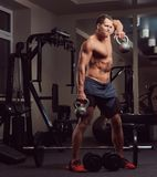 Handsome muscular shirtless bodybuilder male doing exercises with a dumbbell in the gym. stock photo