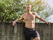 Muscular Shirtless Hunk Man Outdoor in Countryside stock photo