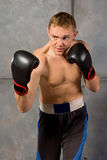 Handsome muscular young boxer Royalty Free Stock Image