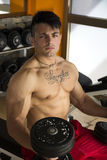 Handsome muscular young man lifting weights Royalty Free Stock Photo