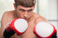 Handsome muscular young man wearing boxing gloves. Stock Photo