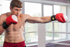Handsome muscular young man wearing boxing gloves. Royalty Free Stock Photos