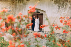 Handsome newlywed couple kissing near entrance of antique ruined castle with cute small red flowers on foreground Stock Photography