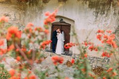 Handsome newlywed pair kissing near entrance of antique ruined castle with cute small red flowers on foreground Stock Image
