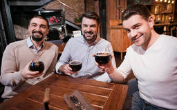 Handsome nice men raising glasses with beer. Good company. Handsome nice cheerful men raising glasses with beer and smiling while enjoying time in a good company stock images