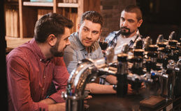 Handsome nice men resting in the bar. Night out. Handsome nice pleasant men sitting at the bar counter and having beer while resting in the bar royalty free stock photos