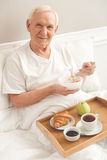 Handsome old man Royalty Free Stock Images