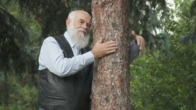 Portrait of handsome senior man hugs a tree trunk. Handsome old man near the tree in park. Gray-haired man stands near the tree and hugs it. Old man embraces a stock footage
