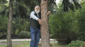 Handsome old man near the tree in park. Gray-haired man stands near the tree and hugs it. Old man embraces a tree trunk in the forest. Old man connects with stock video
