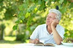 Handsome older man Royalty Free Stock Photography
