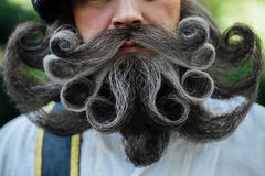 Handsome portrait of a brave Scot with a amazing beard and mustache curls in the Hungarian style. Royalty Free Stock Images