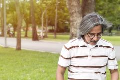 Handsome portrait of middle aged man smiling and relaxing at park stock photo