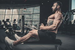 Handsome power athletic man diet training pumping up back muscle royalty free stock photos