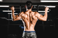Handsome power athletic man diet training pumping up back muscle royalty free stock photo
