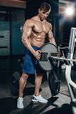 Handsome power athletic man on diet training pumping up muscles with dumbbell and barbell. Strong bodybuilder, perfect royalty free stock images