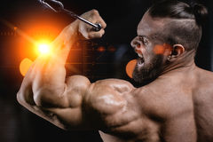 Handsome power athletic man on diet training pumping up muscles. With dumbbell and barbell. Strong bodybuilder with six pack, perfect abs, shoulders, biceps Stock Photography