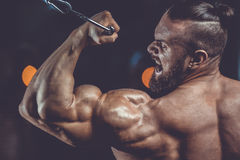 Handsome power athletic man on diet training pumping up muscles Royalty Free Stock Photography