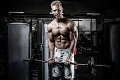 Handsome power athletic man on diet training pumping up muscles royalty free stock image