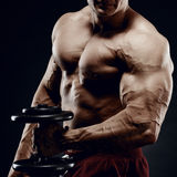 Handsome power athletic man in training pumping up muscles with. Dumbbell. Strong bodybuilder with six pack, perfect abs, shoulders, biceps, triceps and chest Stock Photography