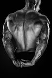 Handsome power bodybuilder showing his back Royalty Free Stock Images