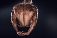 Handsome power bodybuilder showing his back Stock Images