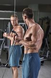Handsome powerful athletic man doing biceps exercise Royalty Free Stock Images