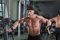 Handsome powerful athletic man doing cable crossover exercise. Stock Image