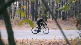Handsome professional male cyclist in black helmet and sports sunglasses having fun on road bike in autumn forest. Young man ridin. G around on bicycle in fall stock video footage