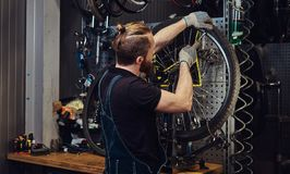 Handsome redhead male in a jeans coverall, working with a bicycle wheel in a repair shop. A worker removes the bicycle. A handsome redhead male in a jeans Royalty Free Stock Photos