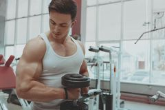 Muscular man working out at the gym stock image