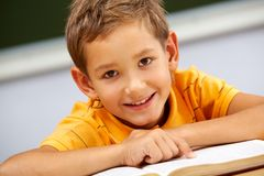Handsome schoolkid Stock Images